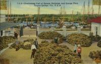 Overlooking Part of Sponge Exchange and Sponge Fleet, Tarpon Springs, Fla. [Florida], USA